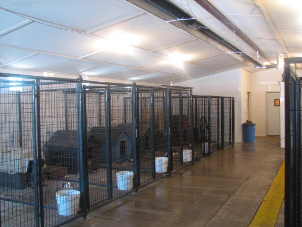 Dog Kennels For Sale Rochester Mn